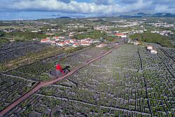 Luftaufnahme einer Windmühle auf Pico in den Weingaerten, Moinho do Pico Vermelho, Azoren / Aerial view of the vineyard on Pico Island with the Windmill Moinho do Pico Vermelho, Acores