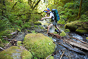 Hiker Hamilton Boyce hops mossy boulders as he crosses a creek along the Eagle-Benson Trail, Columbia River Gorge National Scenic Area, Oregon.