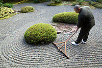 Japanese Gardener - Rev Takafumi Kawakami is the vice-abbot at Shunkoin Temple and teaches classes about Zen culture and meditation and serves as a bridge between Eastern and Western cultures. Here Rev Takafumi is raking the temple's Zen Garden. The Garden of Bolders, or Sazareishi-no-niwa, is the main garden of Shunkoin. The theme of the garden is the Great Shrine of Ise in Mie Prefecture. The Great Shrine of Ise is the head shrine of all Shinto shrines in Japan. This garden houses a shrine to Toyouke-no-omikami, a goddess of agriculture.
