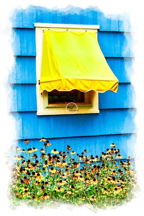 Sunny Yellow Window