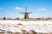 Classic windmil in a winter landscape, South of Holland, Netherlands