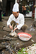 Chinese chef plucks newly slaughtered chicken to cook for restaurant customer at Bao Ding, near Chongqing, China