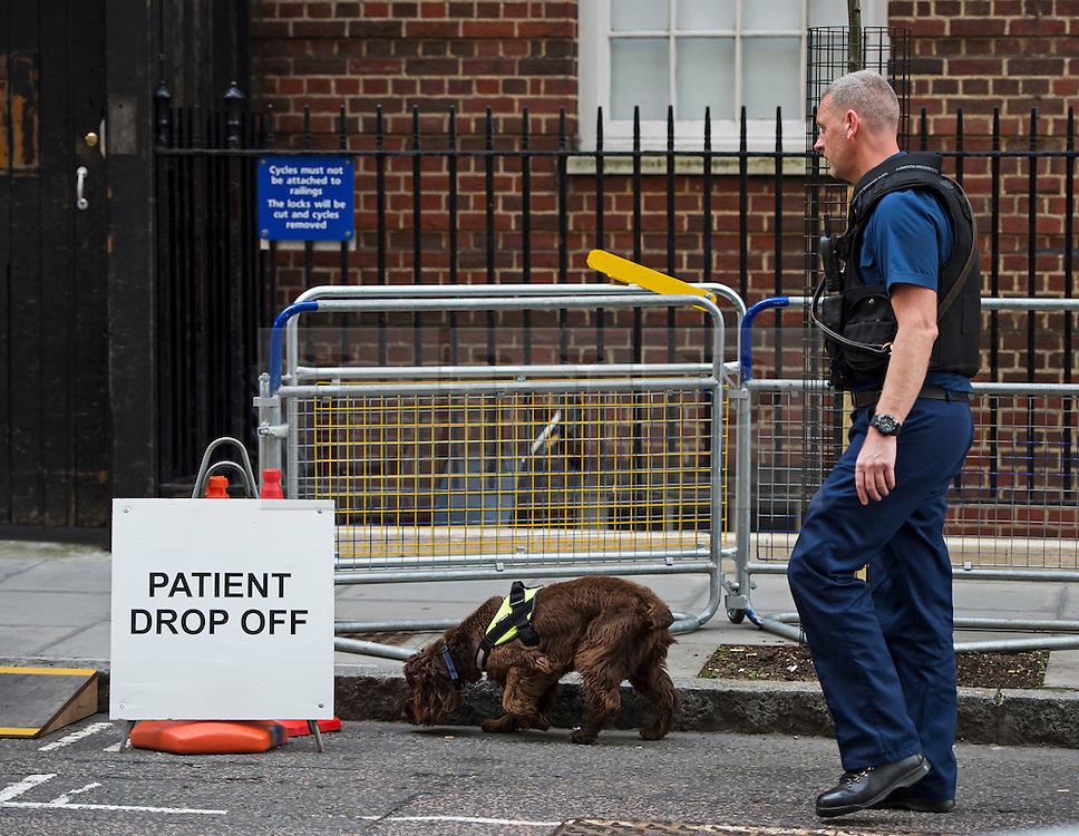25/04/2015. Police sniffer dogs check the grounds surrounding the Lindo Wing of St Mary's hospital in Padding, where The Duchess of Cambridge is due to give birth. Photo credit: Ben Cawthra