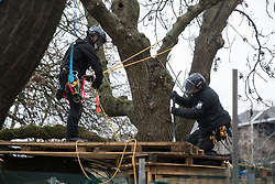 London, UK. 31 January, 2021. Climbers from the National Eviction Team (NET) dismantle a camp in Euston Square Gardens built by anti-HS2 activists from umbrella campaign group HS2 Rebellion seeking to protect trees there from felling by HS2 Ltd in connection with the controversial HS2 high-speed rail project. Five activists continue to occupy tunnels beneath the camp, including Dan Hooper who was known as the roads protester Swampy during the 1990s.