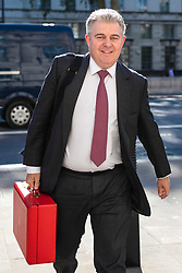 © Licensed to London News Pictures. 21/05/2019. London, UK. Minister without Portfolio and Conservative Party Chair Brandon Lewis arrives for the Cabinet meeting. Prime Minister Theresa May is expected to seek support for proposed changes to the Withdrawal Agreement Bill before it is brought back before Parliament. Photo credit: Rob Pinney/LNP