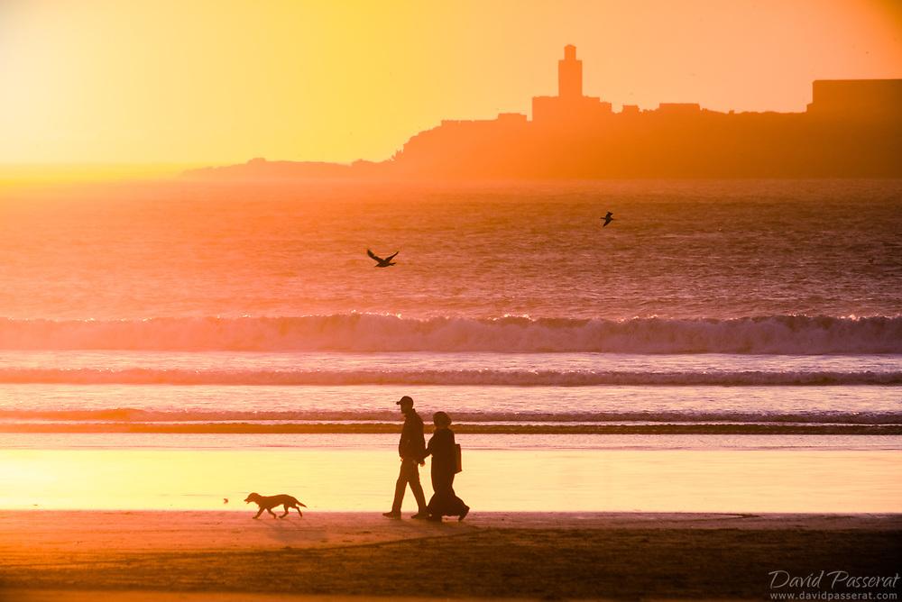 A walk on the beach with a dog.