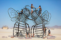 Bee Dance by: Andrea Greenlees, Andy Tibbetts, and Josh Haywood from: London, UK & Reno, NV year: 2019 Bee Dance is a whimsical and inviting art installation in the form of two gigantic Dancing Bees, their legs entwined and their heads touching in a bee kiss. It celebrates one of the most fascinating examples of communication in the natural world — when forager bees return from their exploratory flights and perform the Bee Dance for the other bees, carrying out specific routines in order to communicate the distance and direction of pollen, nectar and water from the hive. Bee Dance is a strong climbable structure that Burners can clamber over and cling to, just as pollen clings to a bee. The Bees are bronze in colour, but on their dancing feet they wear gleaming copper ballet shoes with copper ribbons. The Bees are transformed into dancers. Contact: andrea@hylemo.com https://burningman.org/event/brc/2019-art-installations/?yyyy=&artType=B#a2I0V000001AVlmUAG