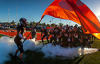 Roseville High School football team comes on the field as Roseville High School hosts Rio Linda High School, Friday Sept. 6, 2013.<br /> Brian Baer/Special to the Bee