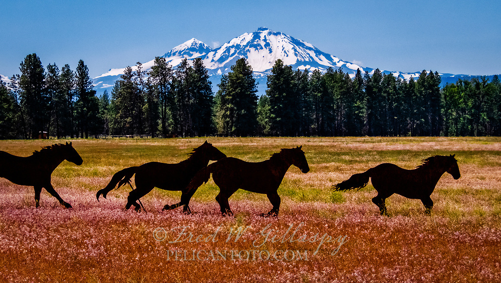 Middle and North Sister Oregon