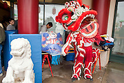 Feb. 8, 2009 -- PHOENIX, AZ: Lion dancers prepare to perform at the Chinese Cultural Center in Phoenix, AZ. Chinese around the world celebrated the New Year this month. This is the Year of the Ox in the Chinese calender. PHOTO BY JACK KURTZ