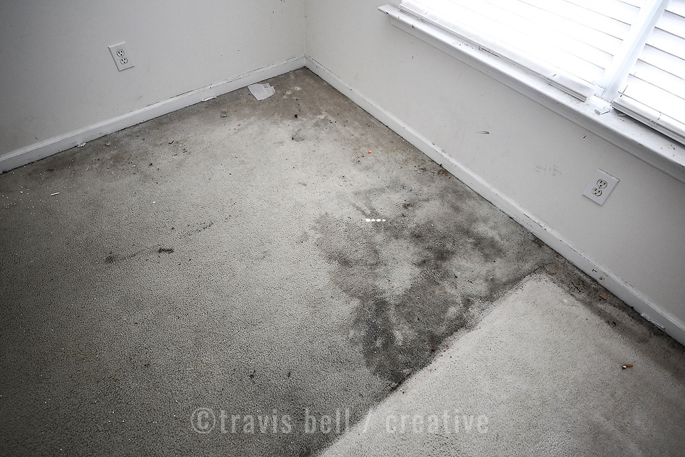 Damage seen at 530 Chisolm Way house, including vinyl, carpet, walls, ceiling and more.