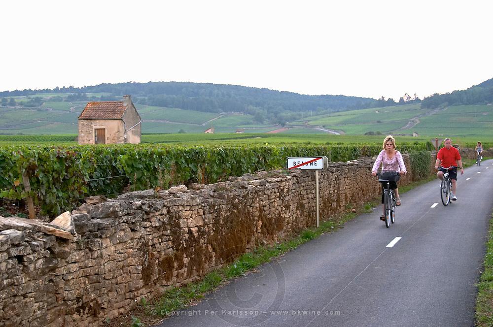 vineyard hut cyclists road sign beaune cote de beaune burgundy france