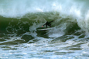 USA, Newport - Surfer gets on huge wave at Ruggles ave. break off the cliff walk.