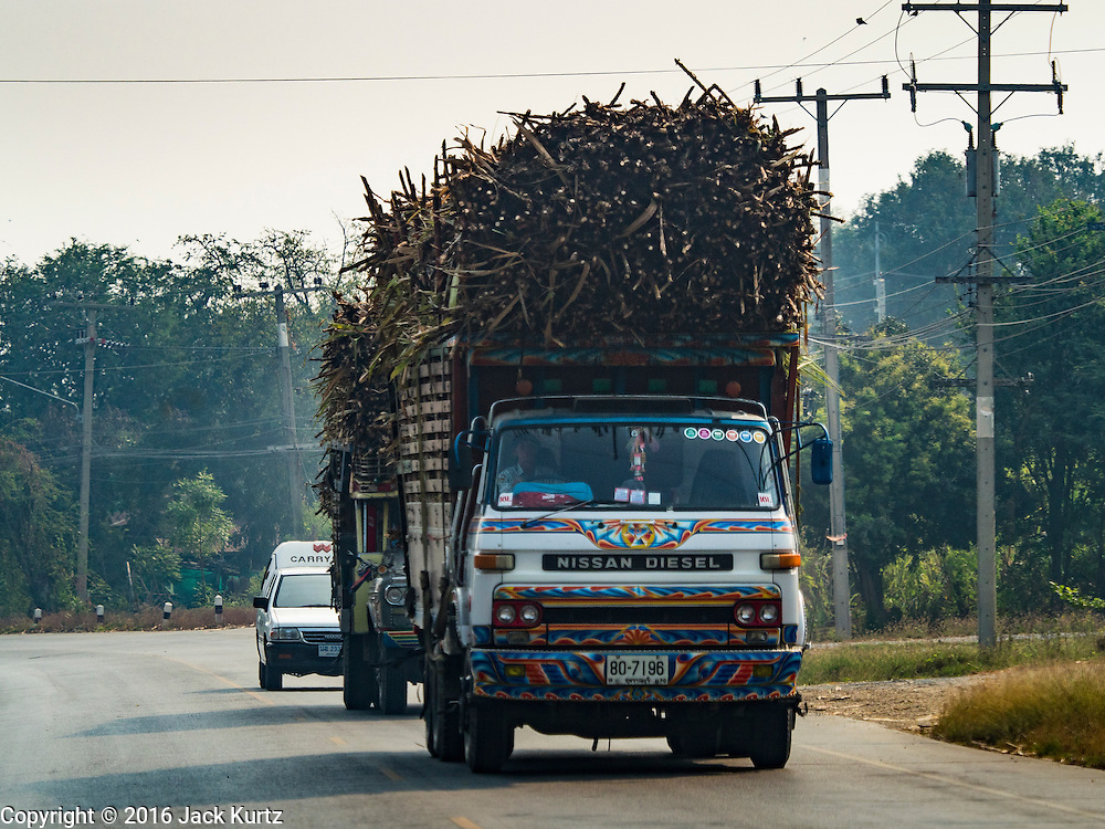 02 FEBRUARY 2016 - BO SUPHAN, SUBPAN BURI, THAILAND:  A truck carrying sugar cane to a sugar mill in rural western Thailand. Thai sugar cane yields are expected to drop by about two percent for the 2015/2016 harvest because of below normal rainfall. The size of the crop is expected to increase slightly though because farmers planted more sugar cane acreage this year. Thailand is the second leading exporter of sugar in the world. Thai sugar growers are hoping a good crop would make up for shortages in global markets caused by lower harvests in Brazil and Australia, where sugar yields have been stunted by drought. Because of the drought in Thailand, sugar exports are expected to drop by up to 20 percent, contributing to a global sugar shortage. The drought is is also hurting the quality of Thai sugar, because sugarcane grown in drought is less sweet than normal so mills need to process more cane to make the same amount of sugar. Thai sugar farmers have lost 20 percent to 30 percent of their output this year because of the drought.       PHOTO BY JACK KURTZ