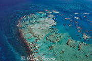 aerial view of southern Belize barrier reef, showing Gladden Spit, where there is a sharp bend in the reef, Gladden Spit and Silk Cayes Marine Reserve, off Placencia, Belize, Central America ( Caribbean Sea )