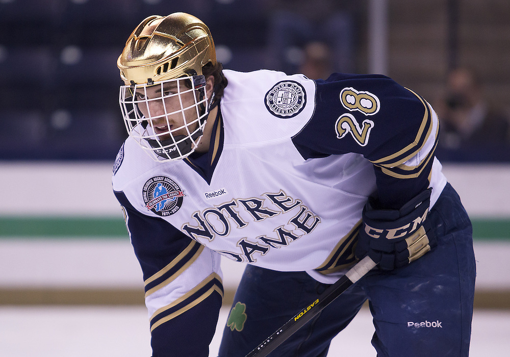 March 15, 2013:  Notre Dame defenseman Stephen Johns (28) during NCAA Hockey game action between the Notre Dame Fighting Irish and the Bowling Green Falcons at Compton Family Ice Arena in South Bend, Indiana.  Notre Dame defeated Bowling Green 1-0 in overtime.