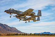 """A-10 """"Warthogs"""" on final approach at Nellis Air Force Base, near Las Vegas, Nevada.  <br /> <br /> Created by aviation photographer John Slemp of Aerographs Aviation Photography. Clients include Goodyear Aviation Tires, Phillips 66 Aviation Fuels, Smithsonian Air & Space magazine, and The Lindbergh Foundation.  Specialising in high end commercial aviation photography and the supply of aviation stock photography for advertising, corporate, and editorial use."""