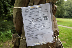 Denham, UK. 11th September, 2020. A Buckinghamshire Council Planning Site Notice for HS2 works at Denham Ford posted on a carved tree in Denham Country Park. Works scheduled for the immediate vicinity include the construction of a temporary bridge across the river Colne to be used in conjunction with the rerouting of pylons through beautiful woodland in Denham Country Park.
