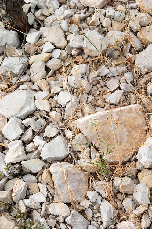 Domaine des Grecaux in St Jean de Fos. Montpeyroux. Languedoc. Calcareous limestone plateau called rendzine. Terroir soil. France. Europe. Vineyard. Soil with stones rocks. Calcareous limestone.