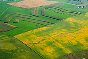 Aerial photograph of the rural Iowa countryside and fields of grains. Dubuque County, Iowa, USA