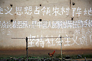 "A chicken walks past a wall that is covered with communist and patriotic slogans in the village of Duntang, in Daoxian County, Hunan Province, China, on 03 June, 2010. One says ""to use Marxism to occupy the rural battlefield"", another says ""uphold the socialist path"".  Duntang was connected to the main electricity grid and began to receive regular supply of electricity only since the beginning of 2009."