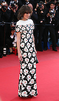 Milla Jovovich at the Blood Ties film gala screening at the Cannes Film Festival Monday 20th May 2013