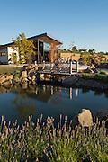 Japanese Garden with lavender surrounding Saffron Fields Vineyard, Yamhill-Carlton AVA, Willamette Valley, Oregon, Saffron Fields Vineyard tasting room, Yamhill, Willamette Valley, Oregon