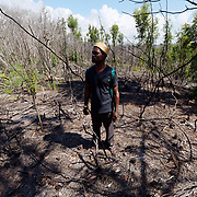 Tovolah Michael Cyrille, Chief of Andranokoditra village, stands in a burned clearing of a forest near his village.The fire in this forest was intentionally set by a man who wanted to log the forest and was rejected by the village so burned it instead. Madagascar