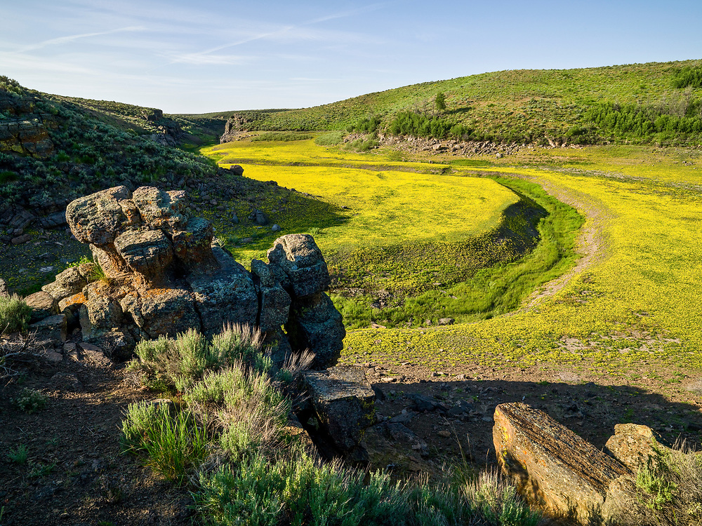 Limited Edition of 17<br /> Early summer on the Camas Prairie near Moonstone Landing with the spring color popping up before Magic Reservoir fills with mountain runoff in the South Central Idaho Desert.