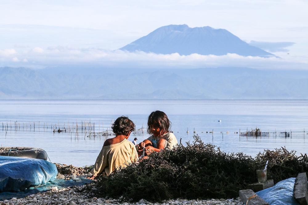 Seaweed farming is the main income at Nusa Penida, Bali