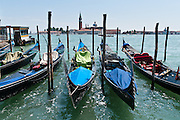 """Gondolas are moored on Saint Mark's Basin across from Chiesa di San Giorgio Maggiore, a 16th century Benedictine church on the island of the same name in Venice, Italy, Europe. The basilica was designed in the classical renaissance style by Andrea Palladio and built from 1566-1610. The white marble basilica rises above the blue water of the lagoon (San Marco Basin and Canal) across from Piazzetta San Marco. The campanile (bell tower), first built in 1467, fell in 1774, and was rebuilt in neo-classic style by 1791. Gondolas are traditional, flat-bottomed rowing boats which ferry people through Venetian canals. From a peak of 10,000 gondolas 200 years ago, just 500 gondolas now serve Venice. The banana-shaped modern gondola was developed in the 1800s. The left side of the gondola is made longer than the right side to resist leftwards drift at the forward stroke. The gondolier stands on the stern facing the bow and rows just on the right side, with a forward stroke and compensating backward stroke. The oar or rèmo is held in an oar lock, or fórcola, shaped for several rowing positions. The decorative fèrro (meaning iron) ornament on the front can be made of brass, stainless steel, or aluminum, as counterweight for the gondolier standing near the stern. The six horizontal lines and curved top of the ferro represent Venice's six sestieri (districts) and the Doge's cap. Painting gondolas black originated as a sumptuary law banning ostentatious competition between nobles. The romantic """"City of Canals"""" stretches across 117 small islands in the marshy Venetian Lagoon along the Adriatic Sea in northeast Italy, Europe. Venice and the Venetian Lagoons are honored on UNESCO's World Heritage List."""