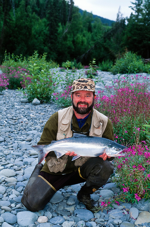 Alaska. Kenai Peninsula. Kenai River. Fisherman poses with red salmon (Oncorhynchus nerka). MR.