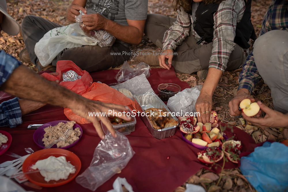 Group of people picnicking with a blanket spread on the ground close up of the food and hands