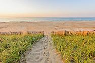 Path to Beach, Sagaponack, Long Island, New York