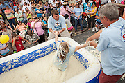 A competitor is help out from a pool of instant grits during the grits roll competition at the World Grits Festival April 14, 2012 in St. George, SC. The festival celebrates the southern love for the sticky corn porridge