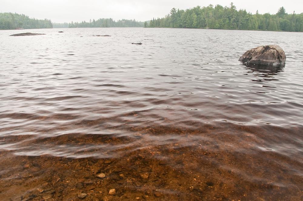 Rainy day landscapes at Craig Lake State Park near Michigamme Michigan.