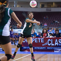 111314      Cayla Nimmo<br /> <br /> Wingate Bear, Mariah Peshlakai (2) sets the ball for a teammate in the State Championship pool game against Sandia Prep held in Rio Rancho Thursday morning.