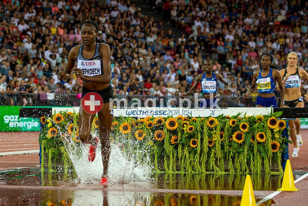 Winner Beatrice CHEPKOECH of Kenya competes in the Women's 3000m Steeplechase during the Iaaf Diamond League meeting (Weltklasse Zuerich) at the Letzigrund Stadium in Zurich, Switzerland, Thursday, Aug. 29, 2019. (Photo by Patrick B. Kraemer / MAGICPBK)