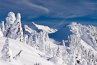 Winter on Kulshan Ridge Heather Meadows Recreation Area North Cascades Washington USA