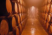 Wine aging cellars of the Granja Nuestra Senora de Remelluri, S.A. winery, in Labastida.  Rioja, Spain.