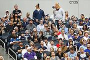 Two Dallas Cowboys fans wear horse masks at Cowboys Stadium in Arlington, Texas, on December 23, 2012.  (Stan Olszewski/The Dallas Morning News)