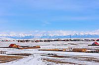 Mongolie, province de Khovsgol, village de Tsagaannuur en hiver // Mongolia, Khovsgol province, Tsagaannuur village in winter