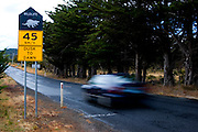 After strong campaigning from scientist Christine Pukk, these official roadsigns were erected on the Tasman Peninsula. Pukk is working on the Tasmanian Devil Facial Tumor Disease issue, which is a contagious cancer.