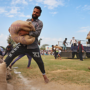 The Rural Olympics