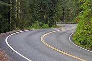 One of many S-curves along the Redwood Highway, US 101 in northern California, USA.