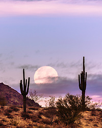 A setting moon at sunrise in the Superstition Mountains of Arizona