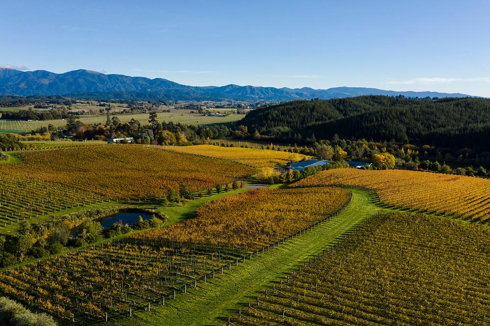 Drone shoot, autumn, Mt Arthur ranges, Upper Moutere.