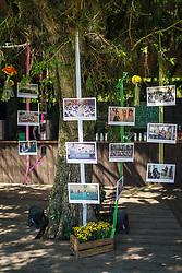 Festa de Comemoração dos 35 anos da Pestana Leilões, ocorrido no O Butiá. Foto: Jefferson Bernardes/ Agência Preview