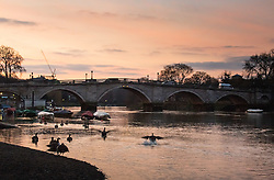 Richmond, London, February 17th 2016. Dawn breaks over the River Thames. <br /> ///FOR LICENCING CONTACT: paul@pauldaveycreative.co.uk TEL:+44 (0) 7966 016 296 or +44 (0) 20 8969 6875. ©2015 Paul R Davey. All rights reserved.