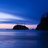 Sunset Cove, Shore Acres state park, Oregon